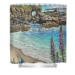 Keyhole Rock Laguna Shower Curtain by Jane Girardot