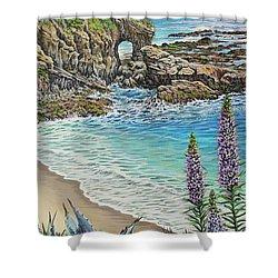 Keyhole Rock Laguna Shower Curtain