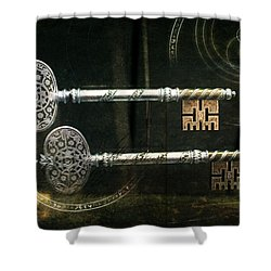 Keys To My Heart Are Silver And Gold Shower Curtain by Evie Carrier