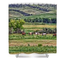 K G Ranch Shower Curtain by Michael Pickett
