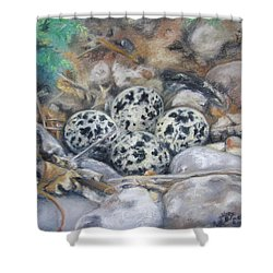 Killdeer Nest Shower Curtain