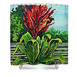 Kim Dracena Shower Curtain