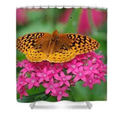 Shower Curtain featuring the photograph Kim's Bosom Buddies Support by Richard Bryce and Family