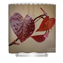 Kindness Can Change The World Shower Curtain by Kerri Farley