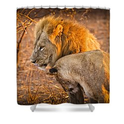 King And Queen Shower Curtain by Adam Romanowicz
