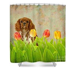 King Charles Cavalier Spaniel Shower Curtain by Liane Wright