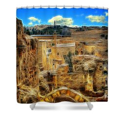 King Davids House Shower Curtain by Doc Braham