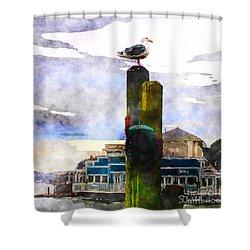 Sausolito Gull Shower Curtain