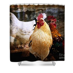 King In The Chicken Coop Shower Curtain by Lee Craig