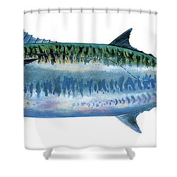 King Mackerel Shower Curtain by Carey Chen