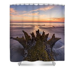 King Neptune Shower Curtain by Debra and Dave Vanderlaan
