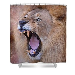 Shower Curtain featuring the photograph King Of Beasts by Dyle   Warren