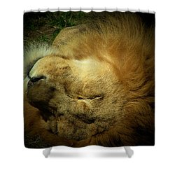 King Of Peace,lion Shower Curtain