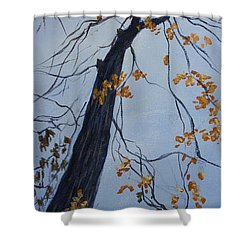 King Of The Forest Shower Curtain by Janet Felts