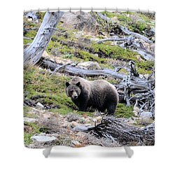 King Of The Mountain Shower Curtain