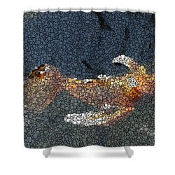 King Of The Pond Shower Curtain by Tim Allen