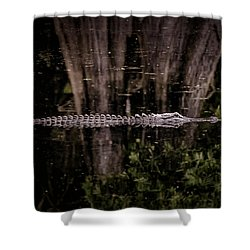 Shower Curtain featuring the photograph King Of The River by Steven Sparks