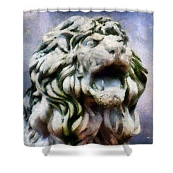 King Of The Sky Shower Curtain by RC deWinter