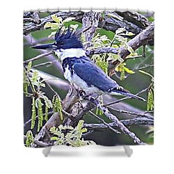 Shower Curtain featuring the photograph King Of The Tree by Elizabeth Winter