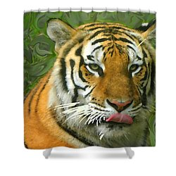 Shower Curtain featuring the photograph Kisa Painted by Sandi OReilly