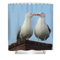 Kiss Me You Fool Shower Curtain