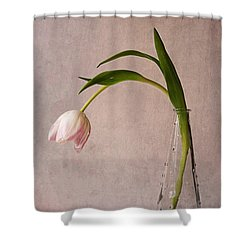 Kiss Of Spring Shower Curtain by Claudia Moeckel