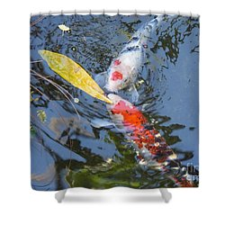 Kissin' Koi Shower Curtain by HEVi FineArt
