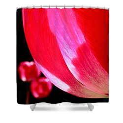 Kissing Shower Curtain by Rona Black