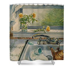 Kitchen Sink Shower Curtain by Joy Nichols