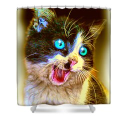 Shower Curtain featuring the painting Kitten by Daniel Janda