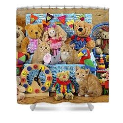 Kitten Dress Box Ck526 Shower Curtain by Greg Cuddiford