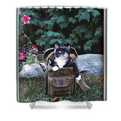 Kitten In A Canvas Bag Shower Curtain by Patricia Keller