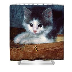 Shower Curtain featuring the photograph Kitten In Slipper by Sally Weigand