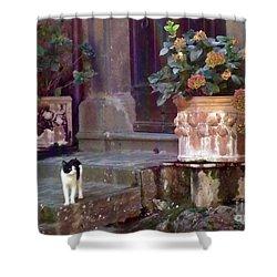 Kitten Italiano Shower Curtain