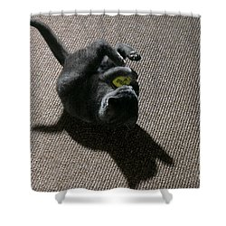 Kitten Playing With Ball Shower Curtain by James L. Amos