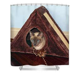 Kitty A-frame Shower Curtain by Sally Weigand