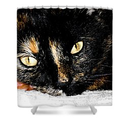 Kitty Face Shower Curtain