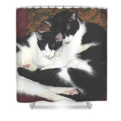 Kitty Love Shower Curtain by Marna Edwards Flavell