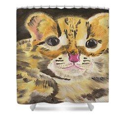 Peek A Boo Kitty Shower Curtain by Meryl Goudey