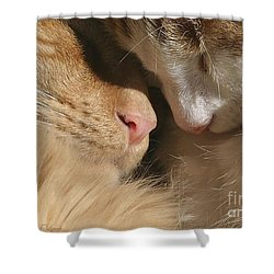 Kity Kat Love Shower Curtain