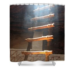 Shower Curtain featuring the photograph Kiva Ladder by Marcia Socolik