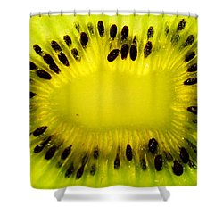 Shower Curtain featuring the photograph Kiwi Sunflower by Chris Fraser