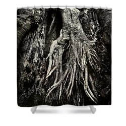 Kneeling At The Feet Of The Green Man Shower Curtain by Rebecca Sherman