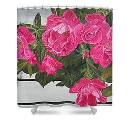 Knock Out Roses Shower Curtain by Wendy Shoults