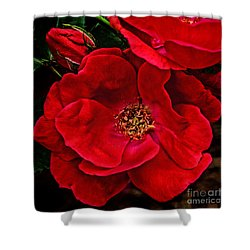 Knockout Red Shower Curtain
