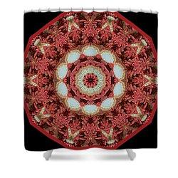 Shower Curtain featuring the digital art Knotty Twists Kaleidoscope by Aliceann Carlton