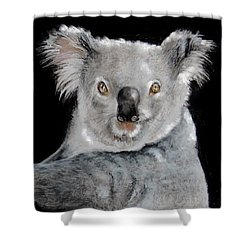 Koala Shower Curtain by Jean Cormier