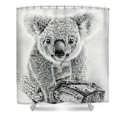 Koala Oxley Twinkles Shower Curtain