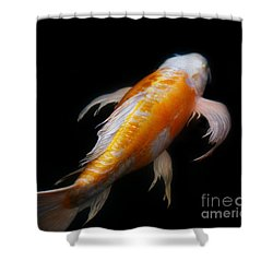 Koi 3 Shower Curtain
