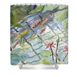 Koi Carp And Waterlilies. Shower Curtain